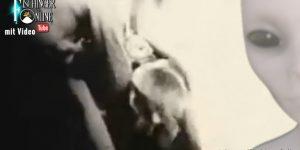 """VIDEO: Die """"Alien Autopsie"""" von Roswell 1947 des Ray Santilli - steckt doch mehr hinter dem UFO-Schwindel-Film? (Bild: Archiv / L. A. Fischinger)"""