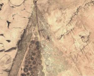 Nazca Lines  Crop Circles Verneukpan South Africa (3)