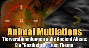 """VIDEO auf YouTube: """"Animal Mutilations"""", die unheimlichen Tierverstümmelungen: Ist wirklich alles nur fauler Zauber und natürlich zu erklären? (Bild: L. A. Fischinger / gemeinfrei)"""