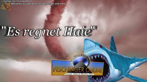 """Hai-Hype um """"Sharknado"""" (Bild: L. A. Fischinger / WikiCommons)"""