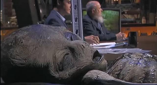 Die Roswell Alien Sliders - Spanisches TV macht sich fantasievolle Mühe (Bild: Screenshot cuatro.com)