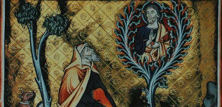 """ARTIKEL: Gott und die Berufung des Mose am """"brennenden Dornbusch"""": War in Wahrheit alles ganz anders? ( Bild: Archiv W.-J. Langbein)"""