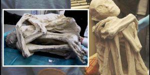 Die Alien-Leichen von Peru - der nächste Streich aus Südamerika (Bilder: Gaia.com / Screenshots YouTube)