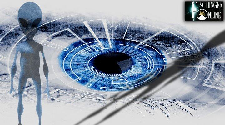 Greys, die Grauen: sind die angeblichen Aliens der UFO-Forschung in Wahrheit keine biologischen Lebewesen? (Bilder: gemeinfrei/pixabay / Montage/Bearbeitung: Fischinger-Online)