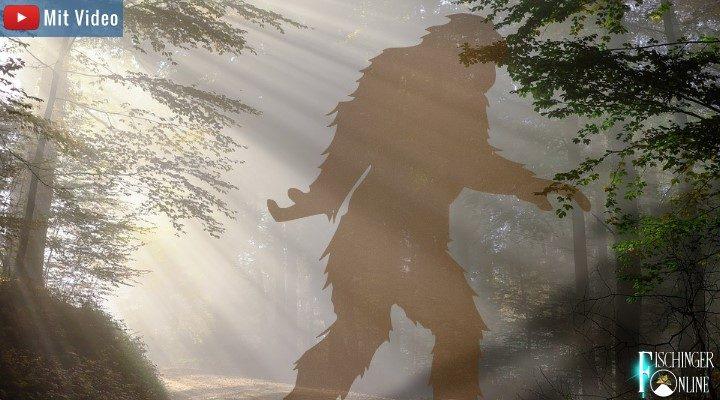 Wurden Menschen vom Bigfoot entführt? Seltsame Geschichten rund um den Sasquatch Nordamerikas