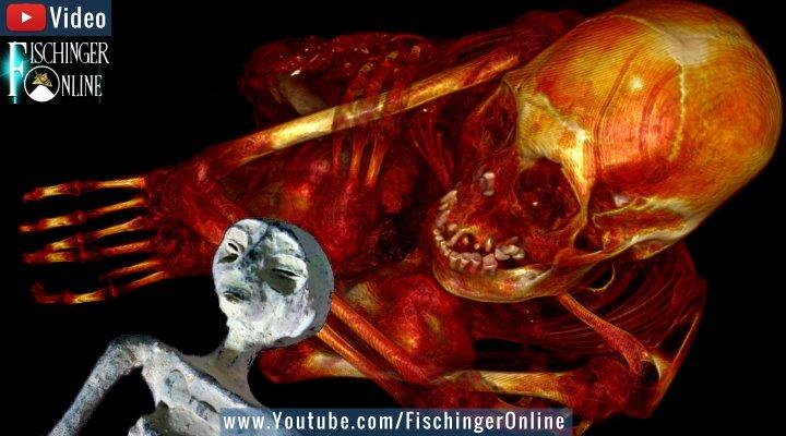 """Die """"Alien-Mumien von Peru"""": Neue Untersuchungen und Fragen um die seltsamen Mumien von Nazca (Bilder: The-Alien-Project.com)"""