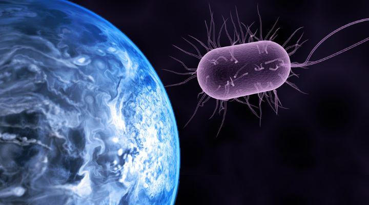 """(Primitives) Leben auf Exoplaneten mit irdischen Bakterien """"befruchten"""" - """"Das wäre die Sache wert"""", sagt ein deutscher Physiker (Bilder: gemeinfrei / Montage: Fischinger-Online)"""