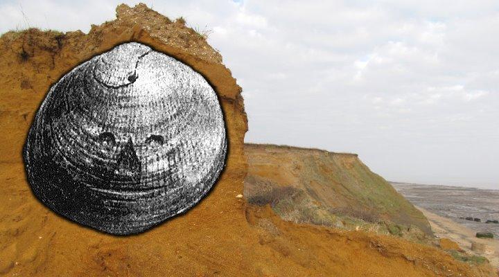 Stammt das älteste Kunstwerke der Menschheit aus Großbritannien? (Bilder: gemeinfrei / H. Stopes)