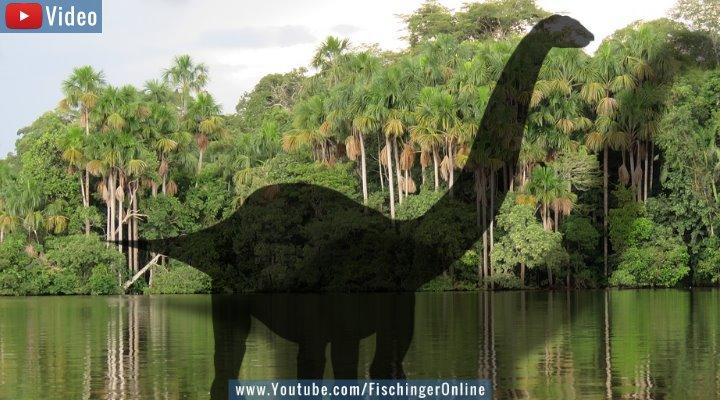 VIDEO: Mokele Mbembe - Haben Dinosaurier bis heute überlebt? (Bilder: PixaBay/gemeinfrei / Montage: Fischinger-Online)