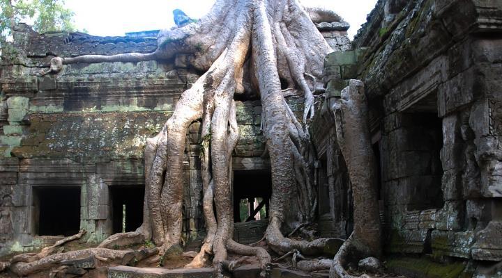 Neue Untersuchungen: In Angkor in Kambodscha lebten einst bis zu 900.000 Menschen (Bild: gemeinfrei)