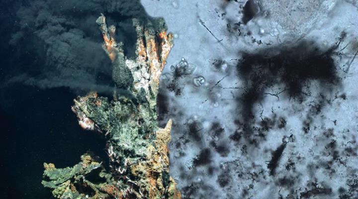 Fossile Mikroben: 3,42 Milliarden Jahre altes Leben entdeckt! (Bilder: B. Cavalazzi & WikiCommons/Zentrum für Marine Umweltwissenschaften, Universität Bremen, CC-BY 4.0 / Montage: Fischinger-Online)