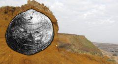 Das Rätsel der gravierten Muschel von Red Crag: Stammt das älteste Kunstwerk der Menschheit aus Großbritannien? +++ Artikel +++
