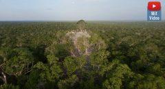 """Fand eine Expedition die """"verlorene Pyramide der Maya"""" und löste das Rätsel um eine der größten Pyramiden der Welt? Die Hintergründe"""